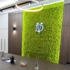 Оформление и дизайн стойки ресепшн, объемные буквы с контражурной подсветкой и флористикой